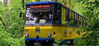 """""""Казковий ліс"""": екскурсія  на трамвайчику + майстер-клас"""