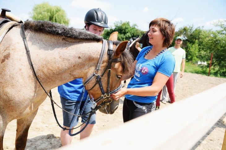 Пони, лошади и веселый пинчер Молли