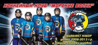 """Секция """"Хоккей с шайбой"""""""