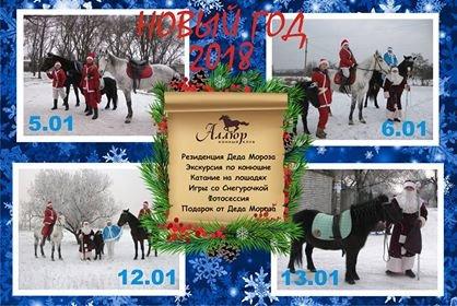 Рождественские каникулы 2018 в конном клубе