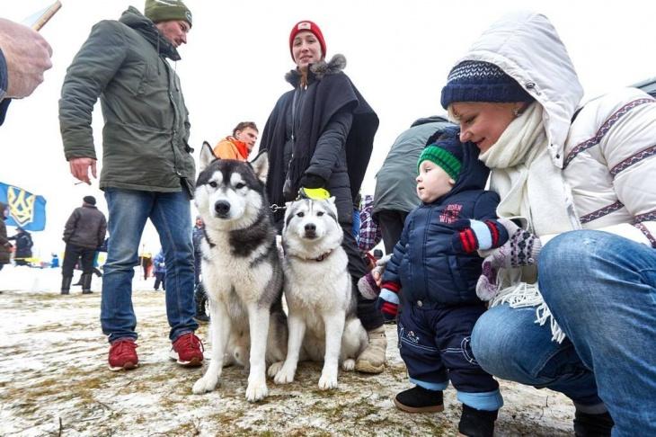 Winter Dog Fest 2018
