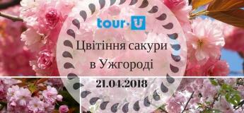 """Екскурсія: """"Цвітіння сакури в Ужгороді"""""""
