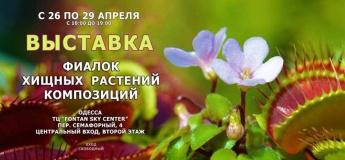 Выставка фиалок и хищных растений