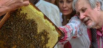 Екскурсія на пасіку та майстер-клас з викачки меду