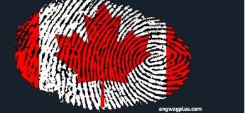 Канада: поетапний план вступу до вишу