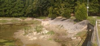 Толока на озері Погулянки