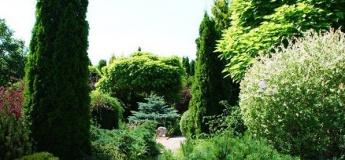 Маленька Софіївка на Дніпрі, садиба Бергманів