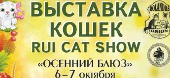 Выставка кошек в Днепре