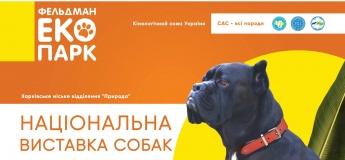 Выставка собак «Осенний бал-2018»