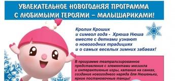 Увлекательное новогодняя программа с любимыми героями - Малышариками!