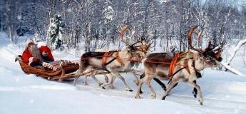 У пошуках різдвяних оленів Санти