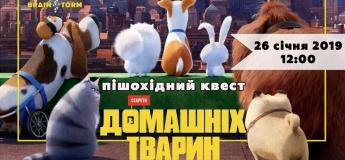 """Пешеходный квест """"Секреты домашних животных"""""""