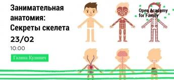 Занимательная анатомия: Секреты скелета