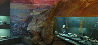 Екскурсії по залах музею + квести