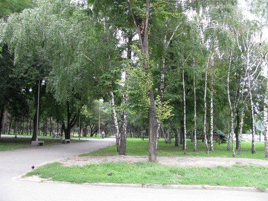 Парк им. Писаржевского